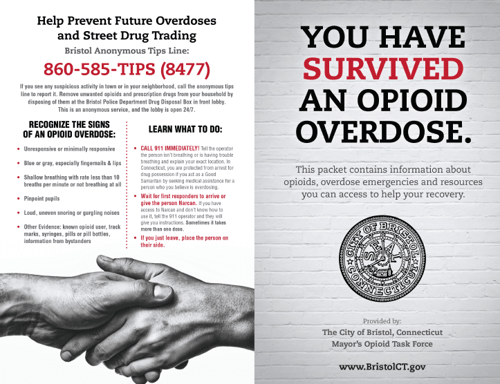 Opioid Brochure Cover You survived v7.jpg